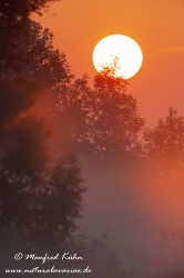Sonnenaufgang ()_0002