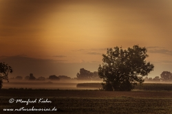 Sonnenaufgang ()_0080