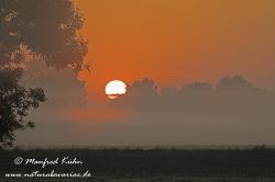 Sonnenaufgang ()_0088
