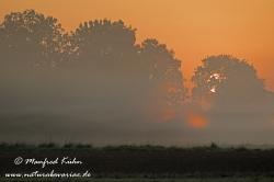 Sonnenaufgang ()_0092