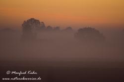 Sonnenaufgang ()_0107
