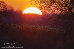 Sonnenaufgang ()_0125